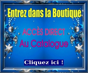 Acces catalogue 300 250