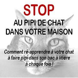 Stop au pipi de chat